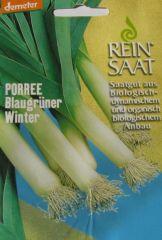 Biologisches Saatgut Porree BLAUGRÜNER WINTER, kbA Allium porum