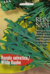 Biologisches Saatgut kbA Wilde Rauke RUSOLA SELVATICA Diplotaxis tenuifolia