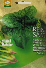 Biologisches Saatgut Spinat MATADOR,Spinacia oleracea L.