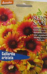 Biologisches Saatgut Kokardenblume, kbA Gaillardia aristata