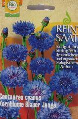 Biologisches Saatgut Kornblume Blauer Junge kbA Centaurea cyanus