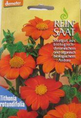 Biologisches Saatgut Sonnenblume mexikanische, kba Tithonia rotundifolia