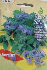 Biologisches Saatgut Borretsch Borago officinalis