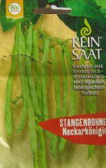 Biologisches Saatgut kbA Stangenbohne NECKARKÖNIGIN Phaseolus vulgaris