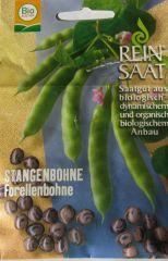 Biologisches Saatgut kbA Bohnen Stangenbohne FORELLENBOHNE Phaseolus vulgaris