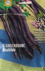 Biologisches Saatgut Bohnen Stangenbohne BLAUHILDE,kbA Phaseolus vulgaris