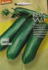 Biologisches Saatgut Gurke QUALITAS, kbA Cuncumis sativus ReinSaat