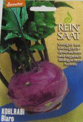 Saatgut Kohlrabi Blaro, Brassica oleracea var. gongylodes