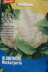 Biologisches Saatgut Blumenkohl NECKARPERLE, KbA Brassica oleracea